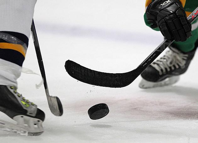 Youth Hockey - Bethpage v Jericho